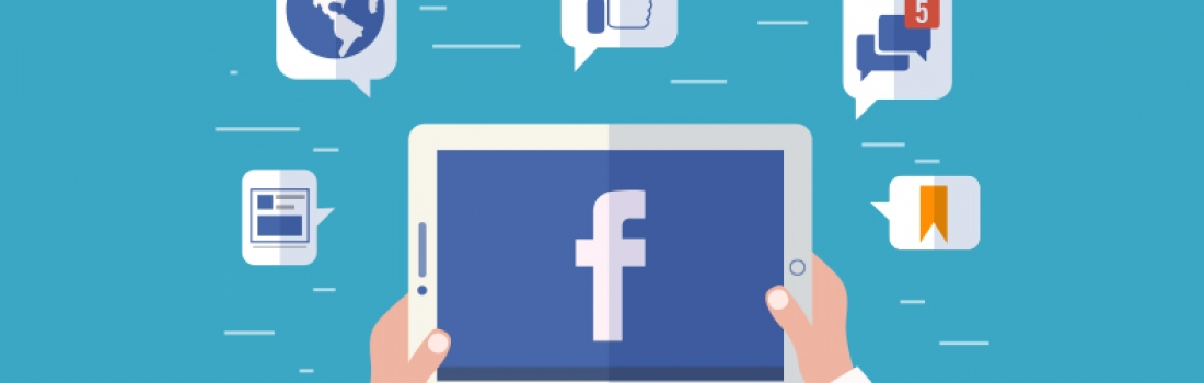 Political Campaign Marketing using Facebook